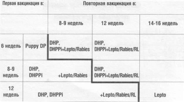 График прививок для щенков